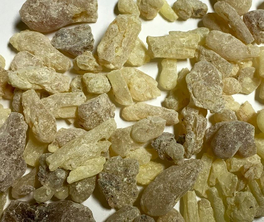 Boswellia carterii resin from Somaliland